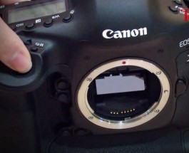 Canon EOS 1DX DSLR Review