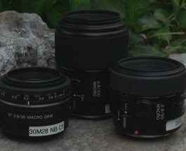 Macro Photography with the Sony DSLR System