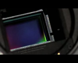 High Speed video of Canon DSLR Shutter – Smarter Every Day 40